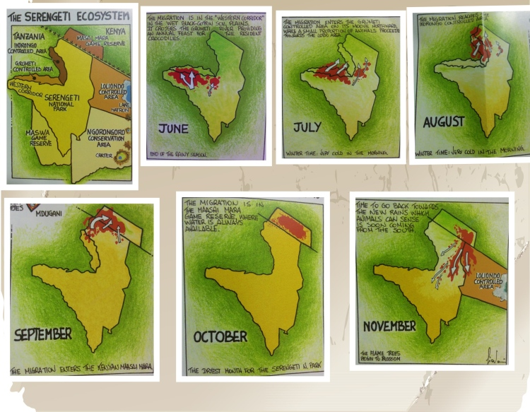 Migration during the dry months. Month wise activity map