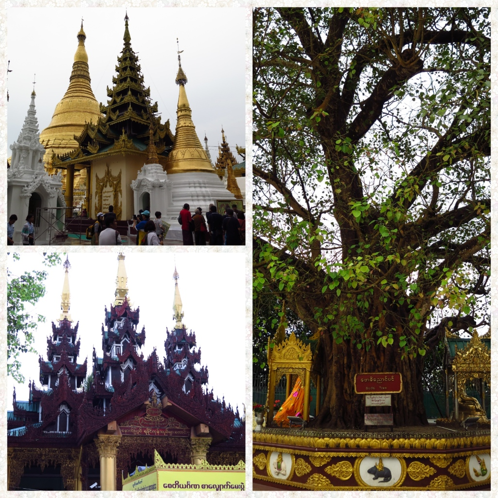 The Mahabodhi tree, 64 stupas around the main zedi and devotional halls